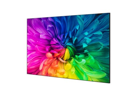 OLED TVS supplier